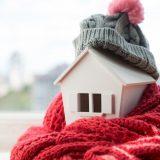 House Winter